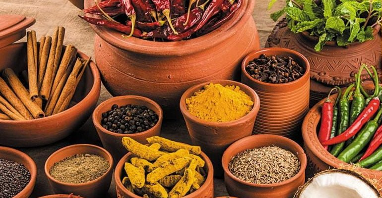 Ready To Cook Food Manufacturer in India - Fibro Foods